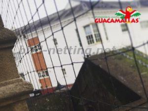anti-bird mesh in houses