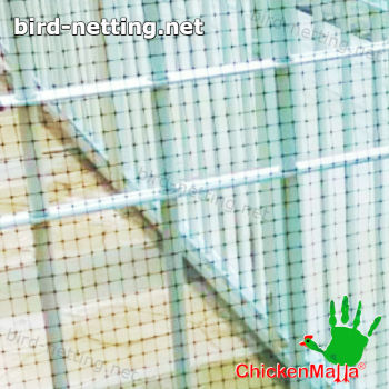 poultry net used in home